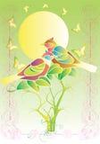 ветви птиц Стоковая Фотография