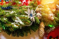 Ветви рождества елевые с украшениями конусов Стоковые Изображения RF