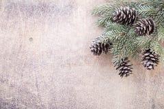 Ветви рождества приветствие рождества карточки Xmas символа Стоковое Изображение RF