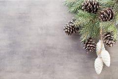 Ветви рождества приветствие рождества карточки Xmas символа Стоковая Фотография RF