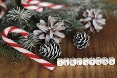 Ветви рождества конуса сосны Стоковое Фото