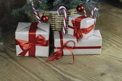 Ветви рождества конуса сосны Стоковая Фотография