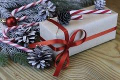 Ветви рождества конуса сосны Стоковые Изображения