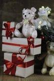 Ветви рождества конуса сосны Стоковые Фотографии RF