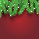 Ветви рождественской елки над карточкой красной предпосылки современной праздничной Стоковые Фото