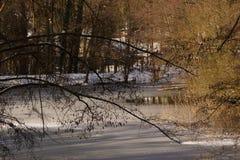 Ветви, снег и солнце - ландшафты зимние - Франция Стоковые Изображения RF