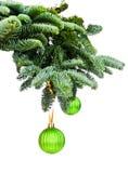 Ветви сосенки и орнаменты рождества стоковые изображения