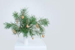 Ветви спруса рождества в вазе В интерьере комнаты на таблице стоковые фотографии rf