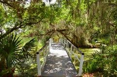 Ветви дуба с испанским мхом над романтичным мостом Стоковые Фотографии RF