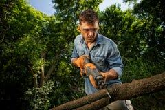 Ветви утески человека Стоковые Фото