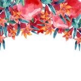 Ветви цветеня гранатового дерева акварели и карточка плодоовощ Стоковые Фотографии RF
