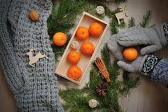 Ветви Tangerine и ели в руках детей закрывают вверх над деревенской деревянной предпосылкой Стоковое Изображение RF