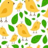 Ветвь безшовной картины живая с canary yellow иллюстрацией вектора птицы на белой предпосылке Стоковые Фото