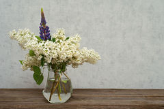 Ветвь белой сирени в вазе, год сбора винограда Стоковые Фотографии RF