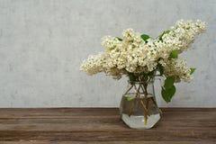Ветвь белой сирени в вазе, год сбора винограда Стоковое Изображение