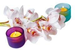Ветвь белых орхидеи и свечей Стоковое Изображение