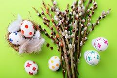 Ветвь вербы Pussy и покрашенные пасхальные яйца Стоковые Изображения RF