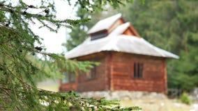 Ветвь дома в деревне видеоматериал