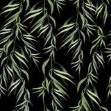 Ветвь евкалипта witn картины акварели безшовная иллюстратор иллюстрации руки чертежа угля щетки нарисованный как взгляд делает па Стоковая Фотография
