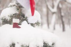 ветвь ели и шляпа Санта со снегом стоковые изображения rf