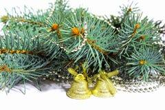 Ветвь ели, колоколы, золото, зеленое Стоковое Фото