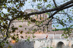 Ветвь дерева явора и замок святого Анджела Стоковая Фотография RF
