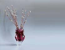 ветвь дерева Pussy-вербы в красной вазе Хворостины вербы, праздника воскресенья ладони символа Серая предпосылка скопируйте космо Стоковые Фото