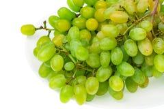 Ветвь зеленых виноградин на белой предпосылке Стоковое Фото