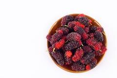 Ветвь зрелого плодоовощ шелковицы в коричневом шаре на изолированной еде плодоовощ шелковицы белой предпосылки здоровой Стоковые Фотографии RF