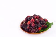 Ветвь зрелых плодоовощ шелковицы и лист шелковицы в коричневом шаре на изолированной еде плодоовощ шелковицы белой предпосылки зд Стоковая Фотография RF