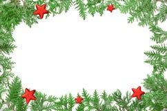 Ветвь и звезда ели на белой предпосылке Взгляд сверху Стоковая Фотография