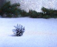 Ветвь и конусы ели изолированные на белой предпосылке Стоковое Изображение