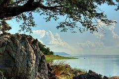 Ветвь и утес дерева на озере: Таиланд Стоковое Изображение