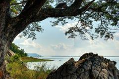 Ветвь и утес дерева на озере: Khon Kaen, Таиланд Стоковое Изображение
