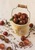Ветвь красных зрелых томатов вишни в желтом цвете, керамическая Стоковое Фото