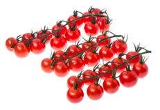 Ветвь красных зрелых томатов вишни с водой падает Стоковые Изображения