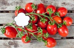 Ветвь красных зрелых томатов и ярлыка вишни Стоковые Изображения RF
