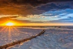 Ветвь лежа на пляже во время захода солнца стоковые фотографии rf