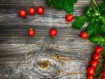 Ветвь малых красных томатов вишни на серой деревянной предпосылке Стоковые Фото