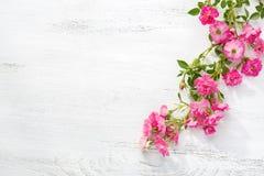 Ветвь малых розовых роз на затрапезном деревянном столе Плоское положение стоковые изображения rf
