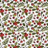 Ветвь омелы Ягоды рябины Хворостины и листья Безшовная предпосылка картины вектора Стоковая Фотография