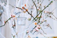 Ветвь оформления свадьбы, белых и зеленых дерева с blossoming отпочковывается Стоковые Фото