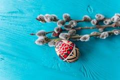 Ветвь пасхальных яя и хворостин Стоковая Фотография