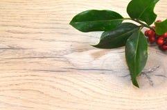 Ветвь падуба установленная на коричневый цвет Стоковые Изображения RF