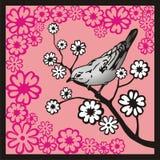 ветвь птицы Стоковая Фотография