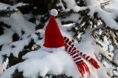 Ветвь рождественской елки под снегом и крышкой рождества Стоковая Фотография RF