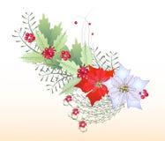 Ветвь рождества иллюстрация вектора