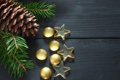 Ветвь рождественской елки с конусом стоковые фотографии rf