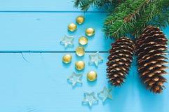 Ветвь рождественской елки с конусом стоковые изображения rf