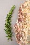 Ветвь свежего розмаринового масла и естественного камня моря на сером затире Стоковые Изображения